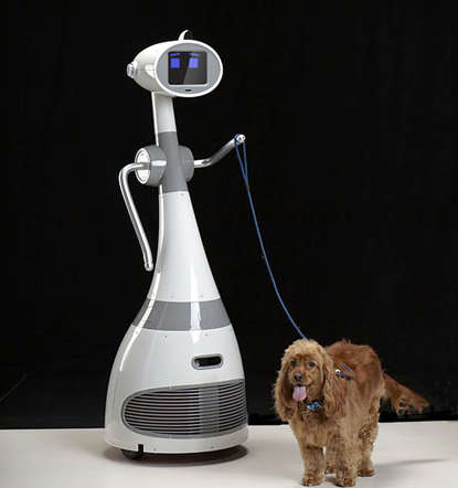 RoboDynamics, a US based company is working to develop Luna - the first human size (almost 1.5 metres) personal robot designed for everyday use. Luna would be able to walk the dog or serve you drinks. You could interact with Luna through wireless communication and its 8-inch touchscreen display.