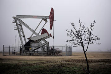 An almond tree stands in front of a pumpjack, Thursday, Jan. 15, 2015, in Shafter, Calif.