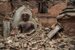 According to BBC, fresh tremors were felt in Nepal and parts of India on April 26, 2015, following yesterday's massive earthquake. The aftershock, which was recorded to be 6.7 on the Richter scale, was the most powerful since the quake. It also triggered a fresh avalanche on Mount Everest. Click through to find out the latest developments.