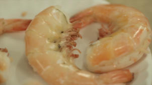 Farmed vs. Wild Shrimp: Which Tastes Better?