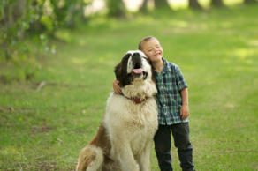 Don't be fooled by the dominating stature of these canines. They're nothing but gentle giants when it comes to their favorite human friends. Click through for 10 large dog breeds that are sweeter than their size may imply.