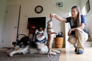 Sarah Casey rewards her dog with a treat as she puts him through some obedience exercises.