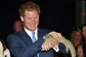 Prince Harry meets Henry the Tuatara - Prince Harry visit to Stewart Island, New Zealand - 10 May 2015