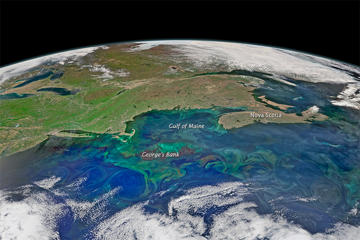A composite image made with data collected by the Suomi NPP satellite on May 14, 2015, shows swirls of emerald-green plankton in the northwest Atlantic Ocean.