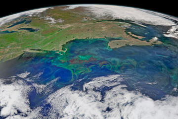 Physical oceanographers will sometimes point out that the ocean has weather and seasons, much like the atmosphere. Masses of water with different temperatures, salinities, and nutrient levels clash and mix like warm and cold fronts in the air. Different plant-like species—phytoplankton—bloom, spread, and die back with the different conditions. Ocean currents swirl in turbulent fronts and eddies—much like tornadoes and hurricanes, though far more productive than destructive.  Springtime in the North Atlantic Ocean is a time of great change, turbulence, and productivity. Increasing sunlight, nutrient runoff from land and upwelling from the deep, and changeable atmospheric weather all conspire to color the ocean surface with interesting patterns. The composite image above shows the northwest Atlantic Ocean on May 14, 2015, with the New England and Canadian Maritimes in the background. The image was constructed from data acquired by the Visible Infrared Imaging Radiometer Suite (VIIRS) sensor on the Suomi NPP satellite.  On the left side of the image, several circular patterns are traced out by the light green phytoplankton near the surface. These rings are likely eddies that have spun off of the Gulf Stream, which turns east toward Europe in this region. The underwater plateau known as Georges Bank is also made visible (indirectly) by the plankton. The Labrador Current and the Gulf Stream meet in this area, and the relatively shallow water promotes an abundant crop of phytoplankton, marine plants, shellfish, finfish, and marine mammals, all the way up the food chain. The bank is marked by bright swirls of color in the image.  Patches and swirls of phytoplankton continue to the north and east from the bank, indicating regions where there are significant nutrients near the surface and other water conditions that promote blooms. Though it is very difficult to identify the genus and species of phytoplankton from a satellite, researchers working from ships in the North Atlantic confirmed that at least some of the phytoplankton blooming in May were diatoms, including Guinardia delicatula.  The Gulf of Maine and Georges Bank have historically been some of the most productive fishing grounds on the planet. Overfishing and pollution brought significant declines in the late 20th century, though regulation and changes in fishing practices may now restore some of the abundance in the local waters. Researchers from the Woods Hole Oceanographic Institution, North Carolina State University, and NOAA have been regularly monitoring the region with ship-based studies, ocean models, and automated, moored instruments in order to keep track of phytoplankton and algae species, particularly those that lead to toxic algae blooms.