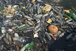 Plastic waste in ocean to increase tenfold by 2020