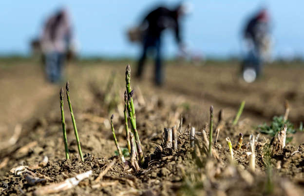 Farmers to city dwellers: We're all in the drought together